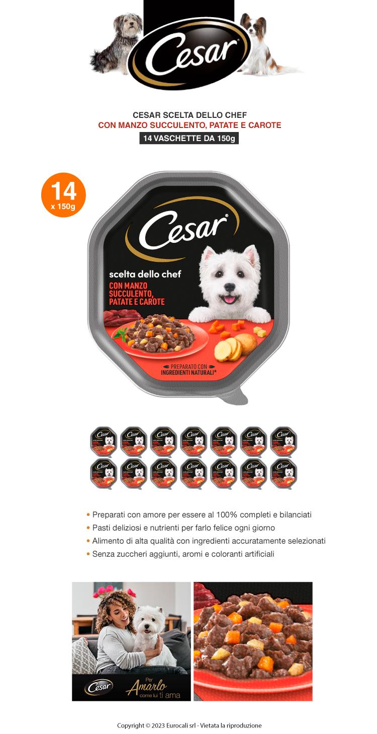 Cesar Scelta dello Chef Delizie di Stagione Cibo per Cani con Manzo e Verdure Autunnali 14 Vaschette da 150g
