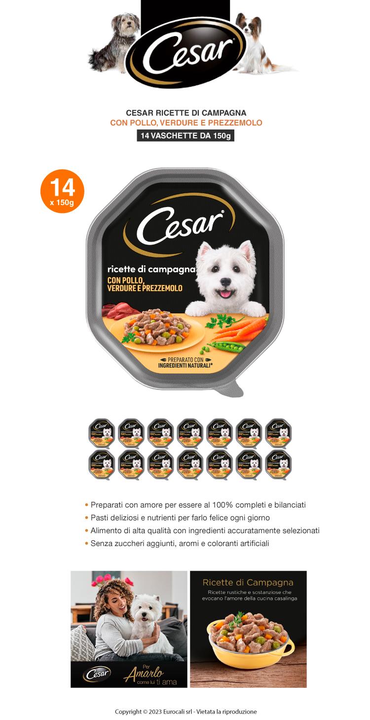 Cesar Ricette di Campagna Cibo per Cani con Pollo e Misto Verdurine in Salsa - 14 Vaschette da 150g