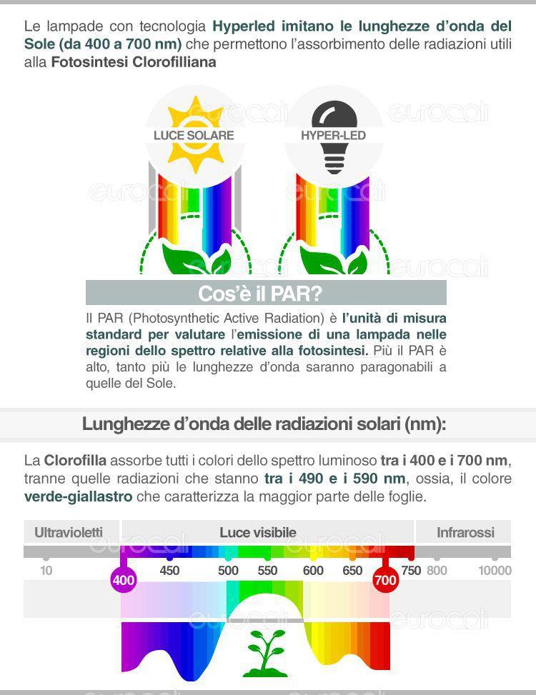 Confronto temperatura colore