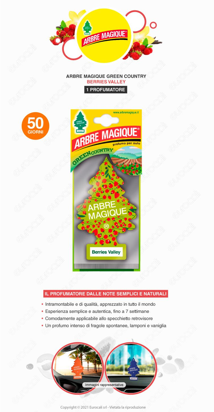 arbre magique freestyke